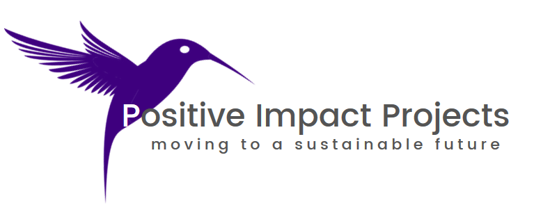 positive impact projects